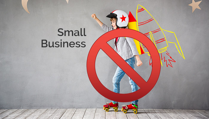 SONA 2018 Small business will not grow the economy, but it can